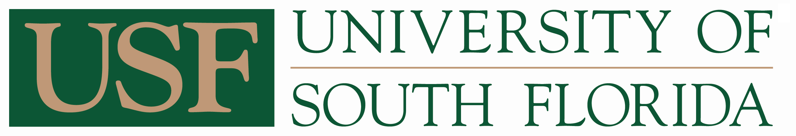 University of South Florida_Cybersecurity Masters Degree Programs